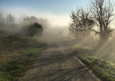 Misty autumnal morning, Istria - cycling around the Zrenj countryside